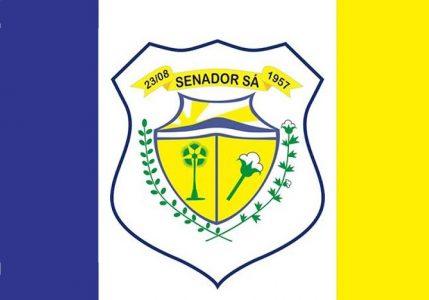 bandeira municipal - senador